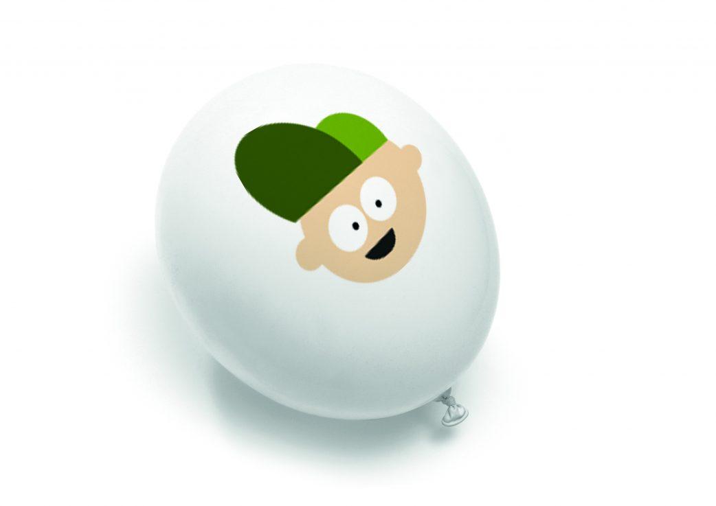 fsh luftballon